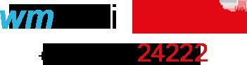 WM TAXI Schladming Logo